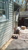 20160410 - Hungry Harvest delivery proof picture (Clio CJS) Tags: 20160410 201604 2016 camerapersonunknown proof house virginia alexandria clintandcarolynshouse box cardboardbox cinderblock yard frontyard deliveryservice service delivery hungryharvest