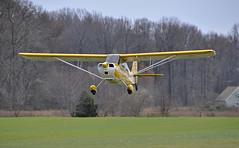N57523 BELLANCA CITABRIA_DSC0081 (massey_aero) Tags: masseyaerodrome openhangarparty2016 citabria bellanca