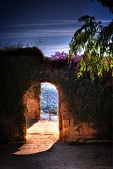 Alcalá de Guadaira al fondo (mgarciac1965) Tags: arco plantas arquitectura castillo alcaládeguadaira sevilla andalucía españa spain turismo nikond5200 sky cielo azul blue