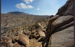 the route (rovingmagpie) Tags: california joshuatreenationalpark joshuatree mastodonmountainloop mastodonmountain kani 8mm desertforests df2016