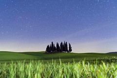 Tranquility among the cypresses (| MI CHI |) Tags: val dorcia pienza siena italy tuscany stars starry night nightscape cypress tree landscape grass sanquirico quirico san valdorcia field toscana valley chianti