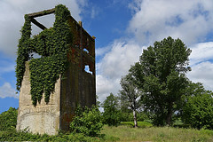 The power of nature! (henryark) Tags: outdoor green trees buinlding old vintage decadent rundown rusty raw iron rust weeds grass hedges abandoned ruin sky clouds light sunny naturallight reinforcedconcrete concrete bricks red blue grey brown leaves dirty surface broken enrico nannini henryark nikon nikond750 fullframe 24120 pontedera tuscany italy perspective architecture nature colors