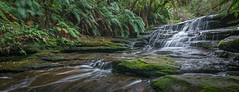 Leura Cascades (affectatio) Tags: leuracascades leura waterfall waterfalls cascades falls bluemountains newsouthwales nsw sony a77mk2 a77ii tokina 1116mm
