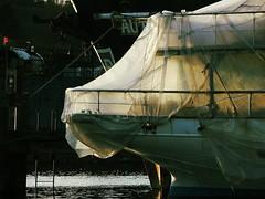 Shipyard (quietseattle) Tags: boats ships boatyard shipyard visqueen fishermen seattle water sailing fishing light salmonbay ballard