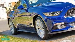 Mustang_09 (holloszsolt) Tags: ford mustang 50 outdoor vehicle sport car nanolex si3 hd autokeramia