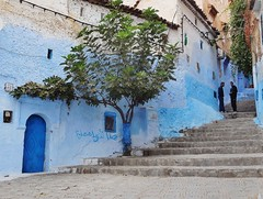 the lone fig tree (SM Tham) Tags: africa morocco rifmountains chefchaouen chaouen thebluecity thebluepearl mountainside town buildings steps figtree door streetscene men windows creepers arabicwriting outdoors