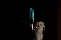 20161203_001_2 (まさちゃん) Tags: 羽 boots ブーツ