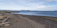 IMG_4479.jpg (funkgasm) Tags: beach orcasisland sanjuanislands water eastsound washington unitedstates