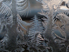 / Secrets of winter forest (Olga Sytina) Tags: winter macro ice window painting frozen frost pattern