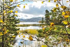 Rogen 2011 (jo.hermann) Tags: summer landscape nikon tour outdoor indian skandinavien unterwegs reva d60 zelten rogen drausen
