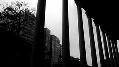 Coexistncia (Bianca B Nascimento) Tags: arquitetura architecture teatro paz da par belm theatrodapaz