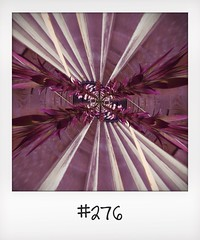 "#DailyPolaroid of 1-7-14 #276 • <a style=""font-size:0.8em;"" href=""http://www.flickr.com/photos/47939785@N05/14496121280/"" target=""_blank"">View on Flickr</a>"