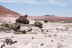 Mark 106a (markbyzewski) Tags: arizona painteddesert ugly petrifiedforestnationalpark
