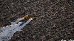 Pilot Aboard, Heading Back to Port (C McCann) Tags: ocean sunset sunlight canada boat flying ship glow bc pacific britishcolumbia aviation air ground victoria aerial vancouverisland juandefuca westcoast pilot strait sdz cgsdz