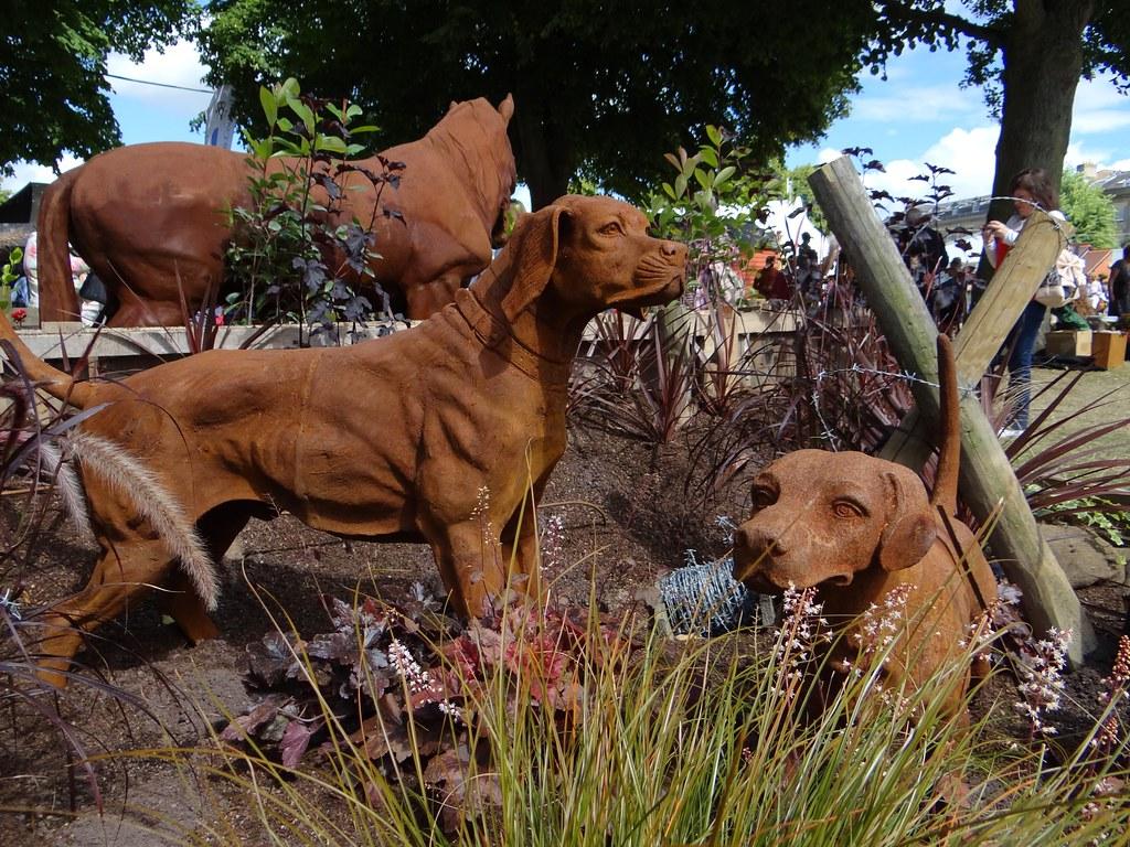 Shrewsbury Flower Show Dogs