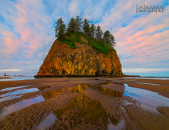 Sunrise From Olympic National Park, Washington (kevin mcneal) Tags: water weather clouds landscapes washington nationalpark nikon unitedstates starfish olympicpeninsula images haystacks coastal pacificnorthwest lowtide oceans olympics washingtonstate forks olympicnationalpark tides scenics secondbeach lapush seastacks oceanlife landscapephotography bodyofwater cloudpatterns quileuteindianreservation lapushbeach pacificoceans kevinmcneal nikond800 oceanimages pacificnorthwestbeaches beachimages scenicimages kevinmcnealphotography kevinmcnealworkshops kevinmcnealphototours washingtonsnorthcoast pacificnorthwestoceans pacificcoastlineofwashington olympiccoastlines quileuteneedlearchipelago