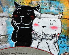 We Are Thinking About You (Steve Taylor (Photography)) Tags: city christchurch streetart smile cat happy graffiti mural poetry cheshire infinity canterbury grin southisland cbd poetica strretart