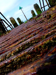 30 July 2014 - Selective Focus (penny_chicken) Tags: wooden jetty aberystwyth promenade seafront