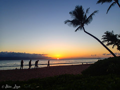 Maui-201 (Photography by Brian Lauer) Tags: maui kihei laperouse nakalelepoint laperousebay ahihikeanaureserve ahihikeanau