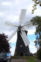 A great fan of windmills