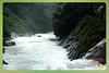 Silent Valley---------------18 (Binoy Marickal) Tags: india green tourism nature water rain kerala mala palakkad evergreenforest treaking silentvalleynationalpark nilgirihills mannarkkad mukkali kuzhur indiabinoymarickal