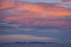 Sunset over the San Francisco Bay Area, CA (arbabi) Tags: california sunset usa color clouds america berkeley colorful hues sanfranciscobayarea tamron wispy berkeleyhills alamedacounty cirrus nephology tulefog seanarbabi grizzlypeakblvd coastalmountainrange nikond800 tamron150600
