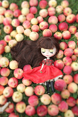 Red Delicious Blythe 5