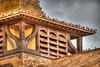 Starlings - Roof West Hall - St Albans (garyd03) Tags: park st lens nikon sigma 500mm albans hdr starlings d610 150mm napsbury platinumheartaward