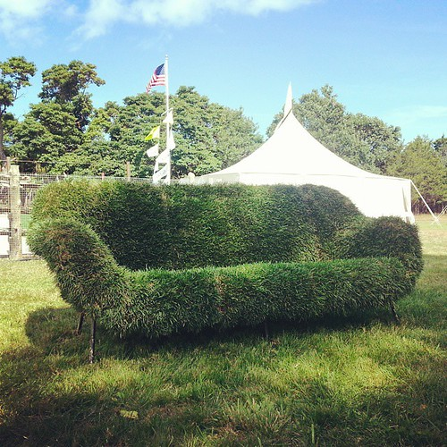 @perfectearthproject #prfctpicnic #Hamptons