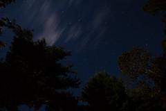 Starry Night (Drummond Wilson) Tags: sky ontario tree night stars perth christielake