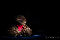 Sanctum (ismailwilliams) Tags: bear red dark painting toy stuffed alone darkness teddy bow scarey lonely scared samctum