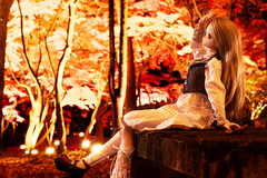 Love cheeks with autumn leaves:紅く染まってそんなことを言うから_03 (sora-to-hari) Tags: autumn girl toy doll autumnleaves ennui lightup 人形 ドール 紅葉 秋 volks 玩具 longskirt kneehighsocks 少女 nagatoro purpleeyes earlyautumn 初秋 ライトアップ toheart2 dollfiedream 長瀞 ロングスカート onelength アンニュイ 小牧愛佳 ドルフィードリーム manakakomaki autumnclothes バニララテ ニーハイ ボークス いいんちょ iinchou 月の石もみじ公園 ワンレン パープルアイズ トゥハートツー 秋服 tweedbest ツイードベスト banirarate rockmapleparkofthemonth nuanceonelength ニュアンスワンレン