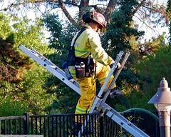 Small Creekside fire gets San Jose Brush response (YFD) Tags: california usa canon fire action 911 sanjose firetruck sjfd emergency ems firedepartment eos7d
