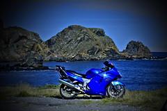 My Bird sunning it at Tarlair (Alex Rainnie - Bikerazzi (FB)) Tags: blue honda scotland bikes blackbird canoneos40d