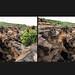 khari gorge 3D, kutch