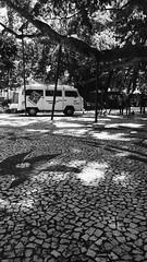 Praça XV (Karen Kirchner) Tags: floripa bw florianópolis centro 15 pb dia feira whatever praça haha xv arvore hm combi figueira aula matei idk nesse pirua