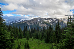 IMG_1285 (Punyapich) Tags: trees usa snow cold west landscape us nationalpark cloudy meadow trails hills mountrainier rainier mountrainiernationalpark grassland westcoast mountians theunitedstateofamerica