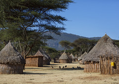 Traditional Village In Borana Tribe, Ola Alakadjilo, Ethiopia (Eric Lafforgue) Tags: poverty africa house building home horizontal architecture outdoors photography community day exterior outdoor straw nobody nopeople structure hut homemade simplicity thatch homestead tradition thatchedroof ethiopia cultures domesticlife anthropology developingcountries thatched lifestyles hornofafrica eastafrica boran thatchedhut ruralscene fulllenght oromo colorpicture nonurbanscene borana borena colourimage indigenousculture africanculture builtstructure residentialstructure borani iavello colourpicture borans booran ethio1406155