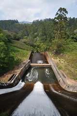 India - Kerala - Munnar - Kundala Dam - 2 (asienman) Tags: india mountains kerala hills teafactory teaplantation munnar teapicker asienmanphotography teaplantagens