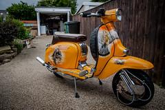 DSC_1009 (jameshowardphotography) Tags: orange yellow lambretta scooter chrome peregrine birds bike leather brakes
