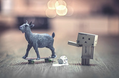 Skategoat. (Matt_Briston) Tags: skategoat skate goat scapegoat spilt milk jug danbo robot matt cooper nikon d90