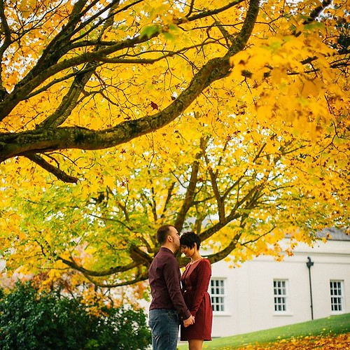 My #traveltuesday post today is from #Taunton at the gorgeous #MountSomersetHotel. Looove shooting an #Engagementsession as they're so creative & fun, especially on location #seasonal portraits. Such a fantastic way to get to know each other. 😊This