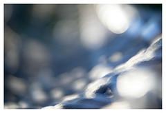 Blue cord (leo.roos) Tags: blue blauw rope touw cord oktoberfest2016 challenge dyxum soft glowing ethereal dreamy velvety lensbabyvelvet5616 emount a7 darosa leoroos