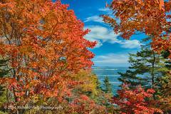 Autumn color in Acadia (RichHaig) Tags: leaves sky atlanticocean landscape nikonafsnikkor2412014ged autumncolors barharbor acadianationalpark me mdi nikond800 richhaig maine gitzotripod clouds
