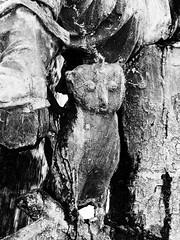Stone owl (schauplatz) Tags: bayerischerwald bayerwald deutschland lamerwinkel urlaub cham denkmal sculpture figurine eule owl marktplatz marketplace