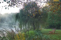 Autumn garden-By the lake (JPShen) Tags: garden autumn mist morning lake tree willow pair chair leaf