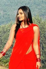 South Actress Deepika Das Hot in Red Sari Photos Set-5 (11)