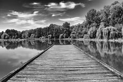 Romantic silence (max tuguese) Tags: silence still life nature black white bw blackwhite monochrome landscape lake pier fishing maxtuguese sony water sky trees cloud