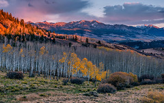Last Remaining Leaves (Aubrey Stoll) Tags: leaves aspen wilsonmountain sunset light snow hills slopes trees branches silver silverbirch valley ouray ridgway telluride lastdollarroad vista shrubs grasses brush bush cloud colorado america usa