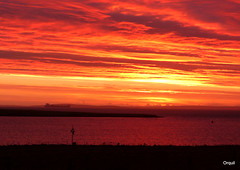A Shepherd's Warning At Scapa Flow (orquil) Tags: shepherdswarning very red november dawn skyscape cloudscape layered clouds golden sunlight spectacular sky navionanglia large ship crudeoil tanker anchored silhouette seaside calm sea scapaflow natural anchorage houton bay leadinglight verydark shadows field fenceline westmainland autumn sunrise earlymorning orkney islands scotland uk unitedkingdom greatbritain orcades great memorable dramatic interesting stunning